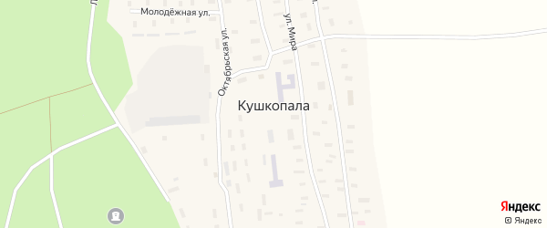 Молодежная улица на карте деревни Кушкопалы с номерами домов