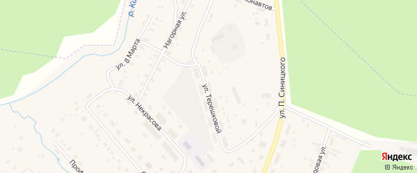 Улица Терешковой на карте поселка Киземы с номерами домов