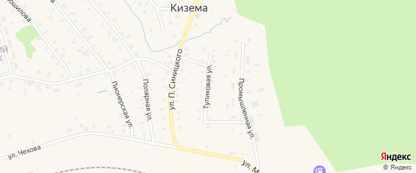 Тупиковая улица на карте поселка Киземы с номерами домов