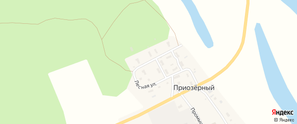 Лесная улица на карте Приозерного поселка с номерами домов