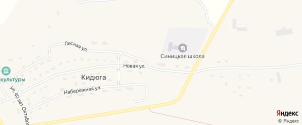 Заречная улица на карте поселка Кидюги с номерами домов