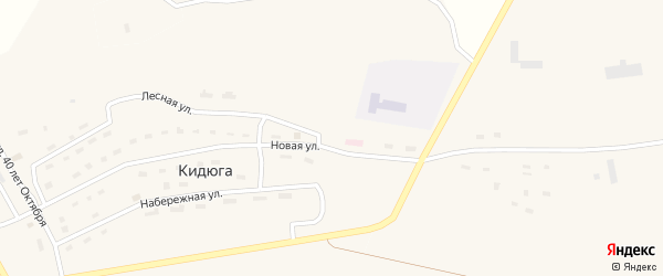 Лесная улица на карте поселка Кидюги с номерами домов