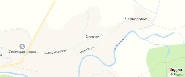 Карта деревни Синики в Архангельской области с улицами и номерами домов
