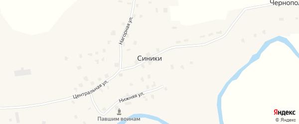 Центральная улица на карте деревни Синики с номерами домов