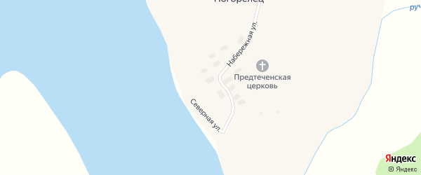 Лесная улица на карте деревни Погорельца с номерами домов