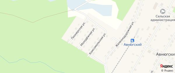 Молодежная улица на карте Авнюгского поселка с номерами домов
