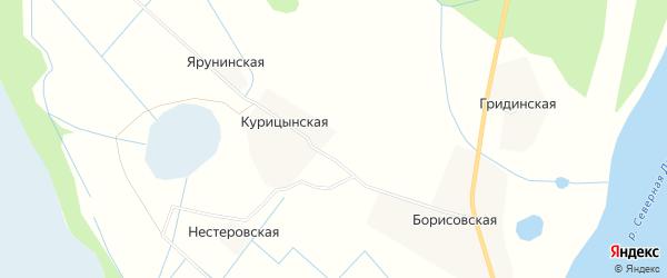 Карта Курицынской деревни в Архангельской области с улицами и номерами домов