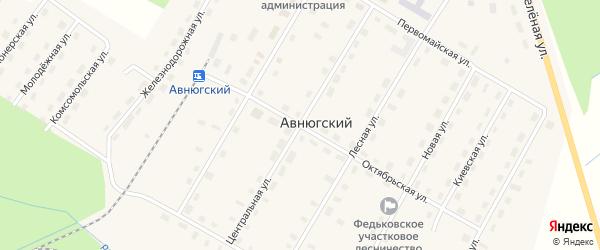 Центральная улица на карте Авнюгского поселка с номерами домов