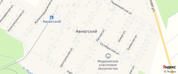 Двинская улица на карте Авнюгского поселка с номерами домов