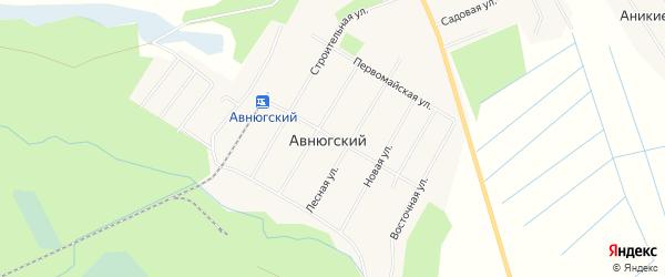 Карта Авнюгского поселка в Архангельской области с улицами и номерами домов