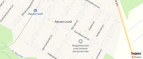 Лесная улица на карте Авнюгского поселка с номерами домов