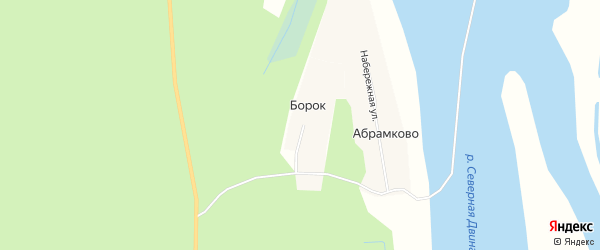 Карта деревни Борка в Архангельской области с улицами и номерами домов