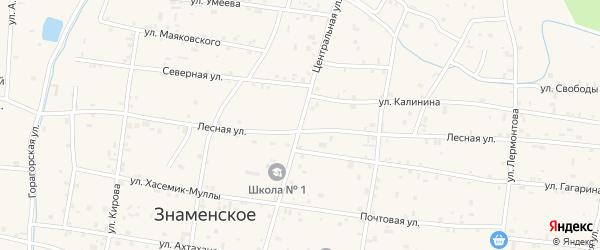 Центральная улица на карте Знаменского села с номерами домов