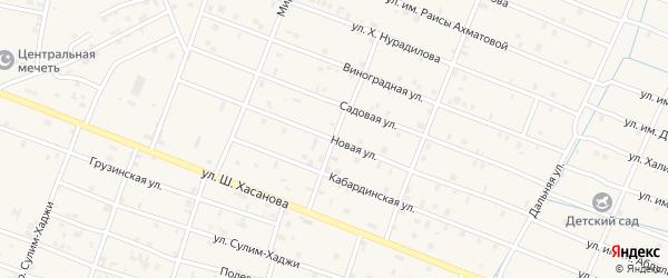 Новая улица на карте Знаменского села с номерами домов
