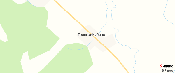 Карта деревни Гришки-Кубино в Архангельской области с улицами и номерами домов