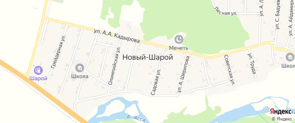Олимпийская 1-я улица на карте села Новый-Шарой с номерами домов