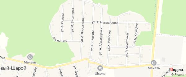 Улица С.Бадуева на карте села Новый-Шарой с номерами домов