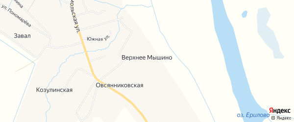 Карта деревни Верхнее Мышино в Архангельской области с улицами и номерами домов