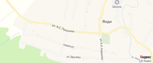 Улица Пушкина на карте села Янди с номерами домов