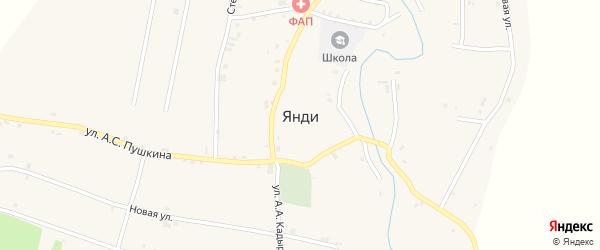 Луговой переулок на карте села Янди с номерами домов