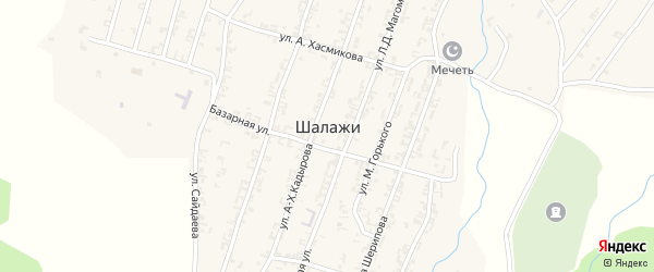 Улица В.Асакаева на карте села Шалажи с номерами домов