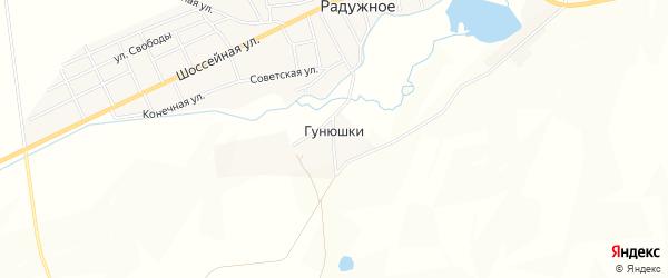 Карта поселка Гунюшки в Чечне с улицами и номерами домов