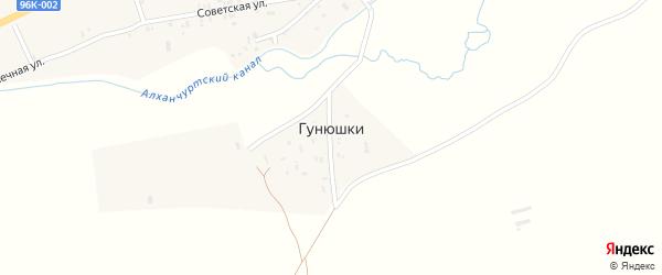Южная улица на карте поселка Гунюшки с номерами домов