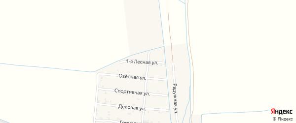 Лесная 1-я улица на карте Пролетарского села с номерами домов