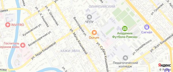 Виноградная улица на карте Грозного с номерами домов