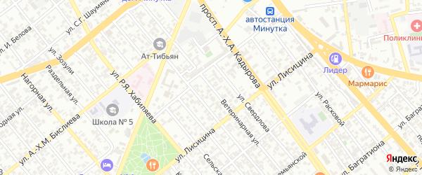 Ветеринарная улица на карте Грозного с номерами домов