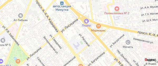 Улица Расковой на карте Грозного с номерами домов