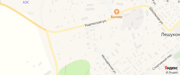 Ветеринарная улица на карте Лешуконского села с номерами домов