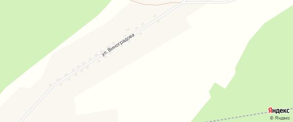 Южная улица на карте поселка Ерги с номерами домов