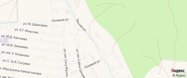Лесная улица на карте села Чечен-Аул с номерами домов