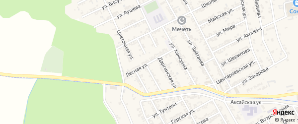 Лесная улица на карте села Центора-Юрт с номерами домов