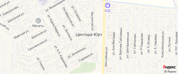 Полевая улица на карте села Центора-Юрт с номерами домов