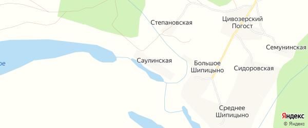Карта Саулинская деревни в Архангельской области с улицами и номерами домов