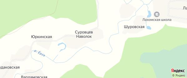 Карта деревни Суровцева Наволок в Архангельской области с улицами и номерами домов