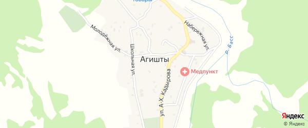 Речная улица на карте села Агишты с номерами домов