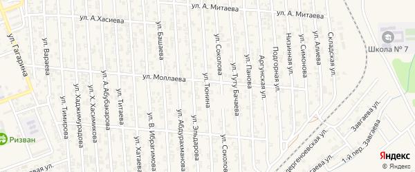Улица А.Тюнина на карте Аргуна с номерами домов