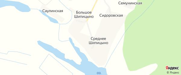 Карта деревни Среднее Шипицыно в Архангельской области с улицами и номерами домов