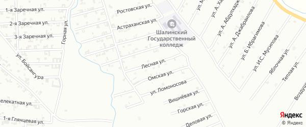 Лесная улица на карте Шали с номерами домов