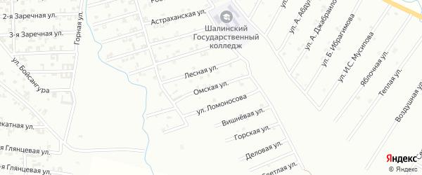Омская улица на карте Шали с номерами домов