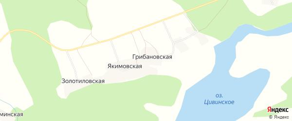 Карта Грибановской деревни в Архангельской области с улицами и номерами домов