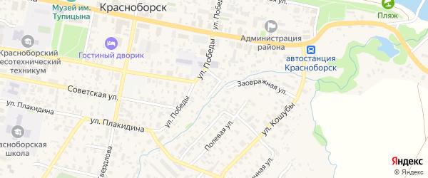Колхозный переулок на карте села Красноборска с номерами домов