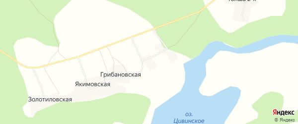 Карта Ивакинской деревни в Архангельской области с улицами и номерами домов