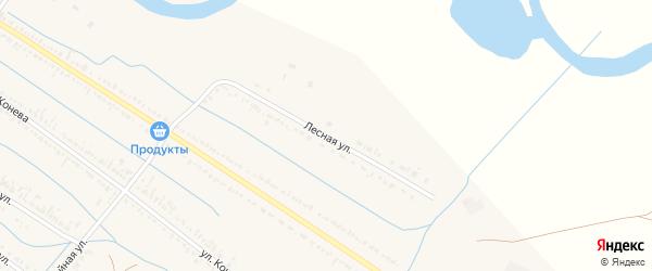 Лесная улица на карте села Старицы с номерами домов