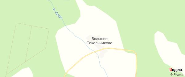 Карта деревни Большое Сокольниково в Архангельской области с улицами и номерами домов
