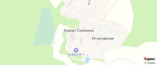 Лесная улица на карте деревни Курорта Солонихи с номерами домов