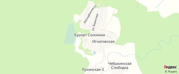 Карта деревни Курорта Солонихи в Архангельской области с улицами и номерами домов